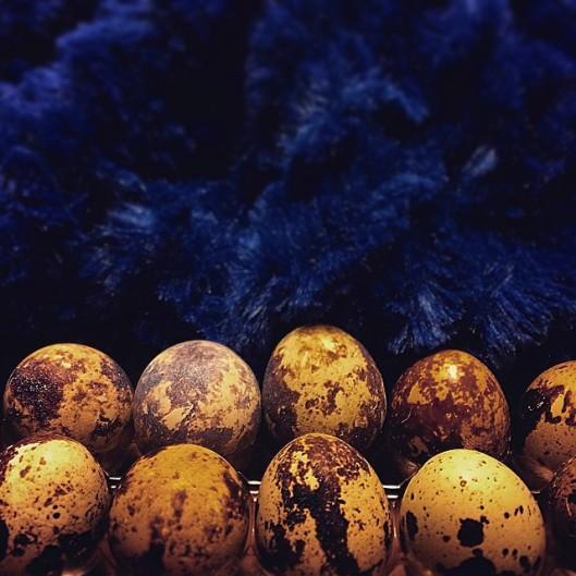 eggsyo